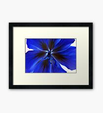A blue flower Framed Print