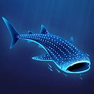 Whale Shark by Tami Wicinas