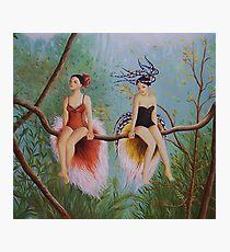 Birds of Paradise Photographic Print