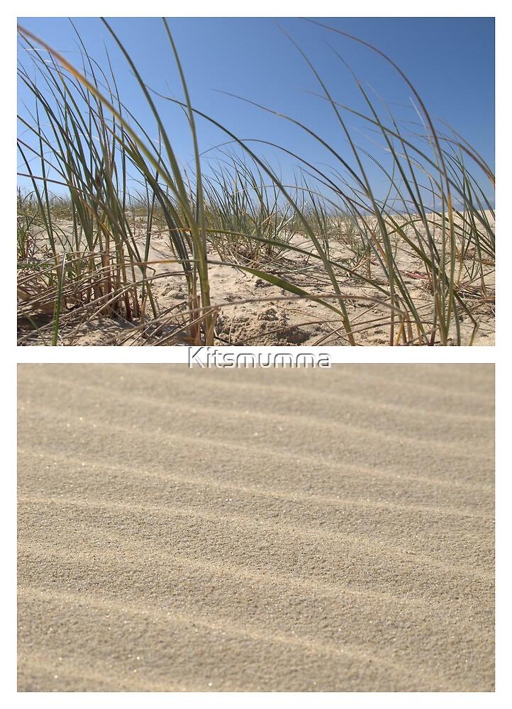 Beach Dunes - Diptych by Kitsmumma