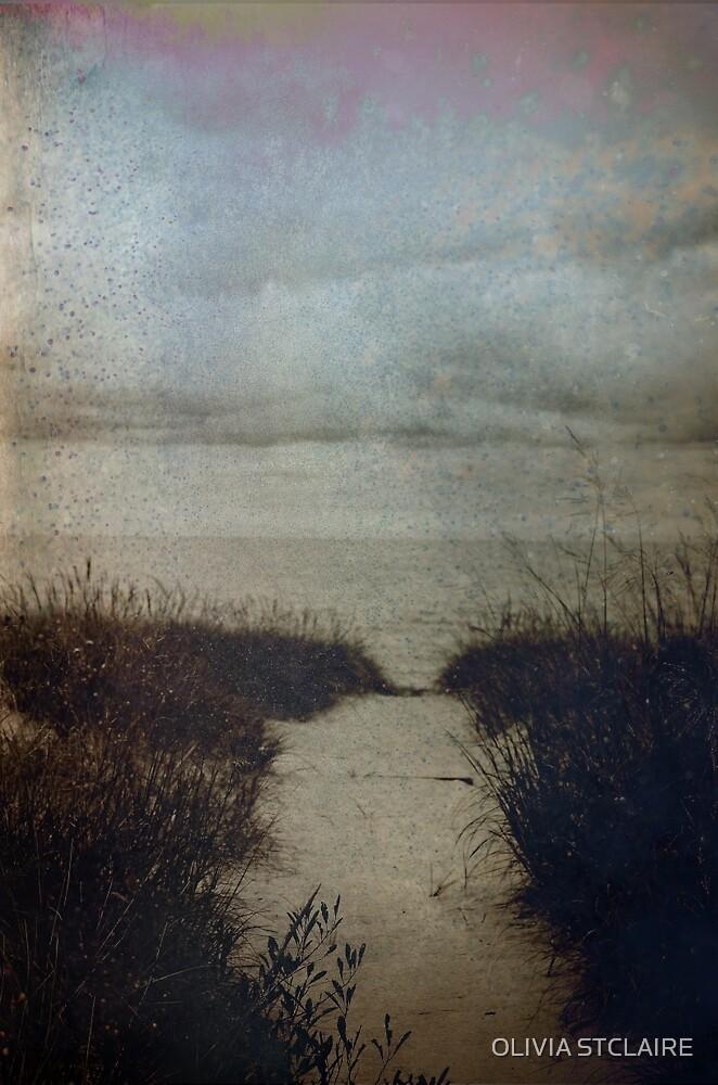Ocean Dreams by OLIVIA JOY STCLAIRE