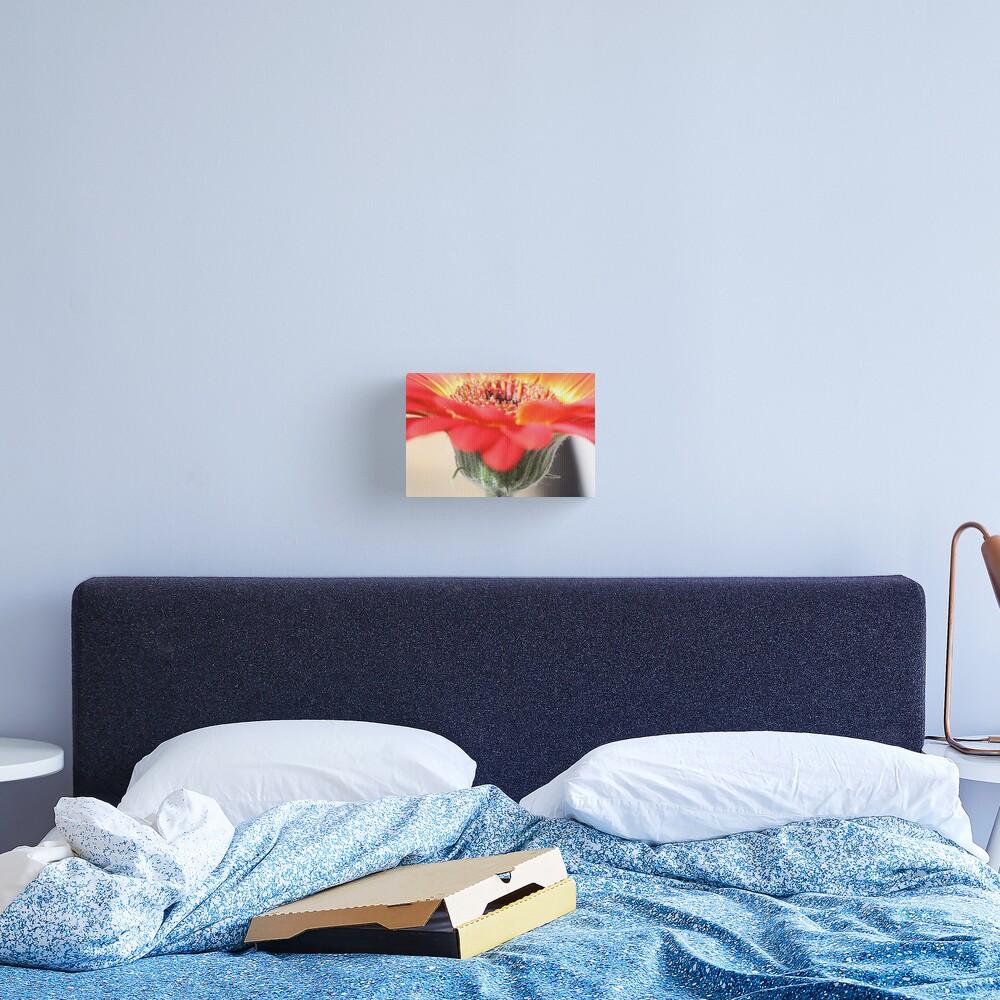 flortation line Canvas Print