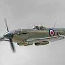 Supermarine Seafire MK.XVII by SWEEPER
