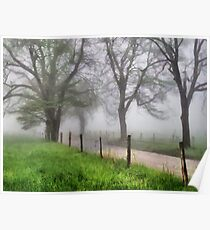 Early Spring - Great Smoky Mountains Poster