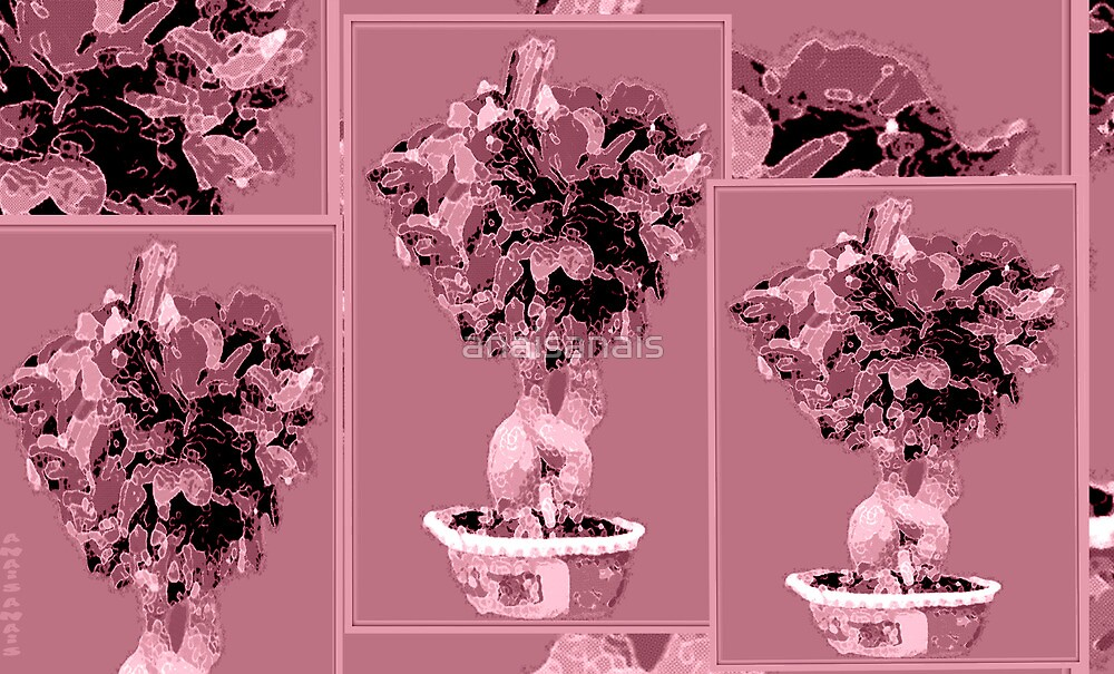 CollageMonAmour (BoisDeRose) by anaisanais