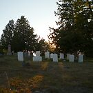 headstones in the sun by flyprincess