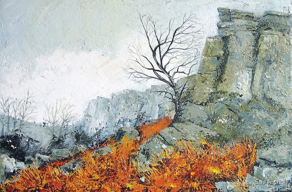Autumn on Stanage by Sue Nichol