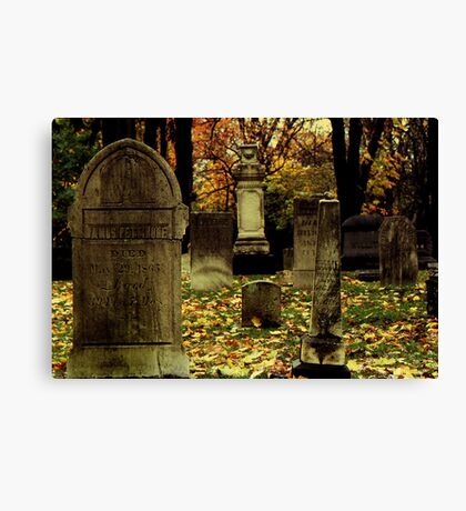 Cemetary in Michigan Canvas Print
