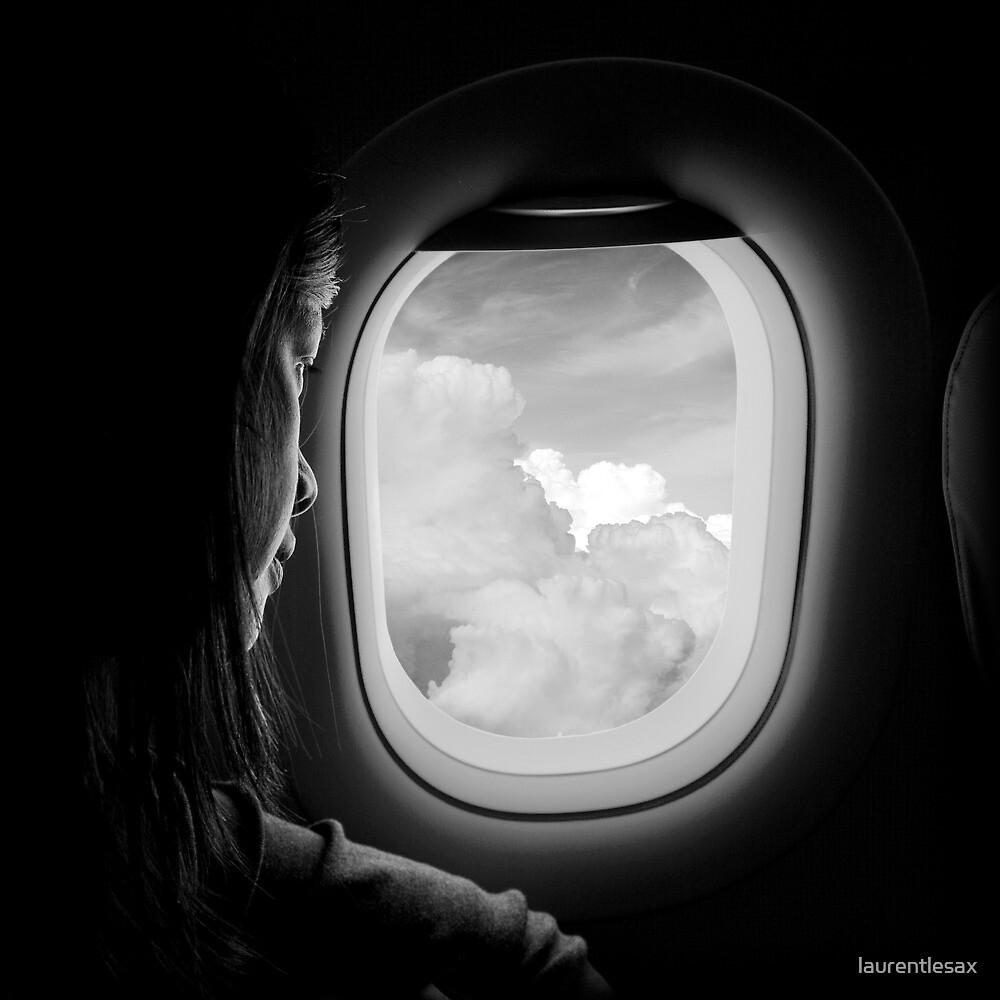 Flight neighbor by laurentlesax