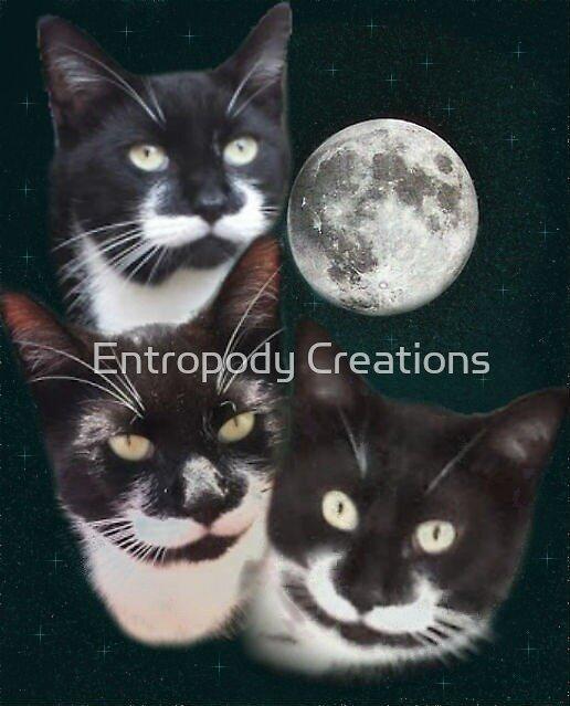 Three Moustache Cat Moon by Hypernova Rain