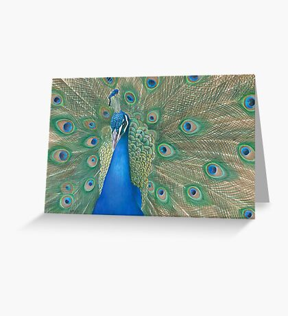 Casanova II Greeting Card