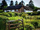 Country Living by naturelover