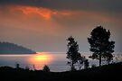 Loch Katrine, Trossachs by David Mould
