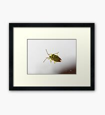 My house has been bugged! Framed Print