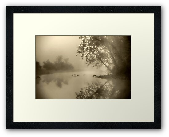 Misty in Sepia by dlennis