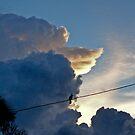 The stormwatcher by Daniel Martens
