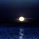 Moon over Blue Waters by Colleen Rohrbaugh