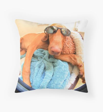 Just chillin dudes Throw Pillow