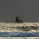 Tweed trawlers (cal image #9)  by Odille Esmonde-Morgan