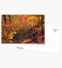 Fiery Forest Postcards