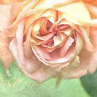 «Tómese el tiempo para oler las rosas» de ASTRID EWING