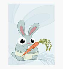 Trunk Bunny Photographic Print