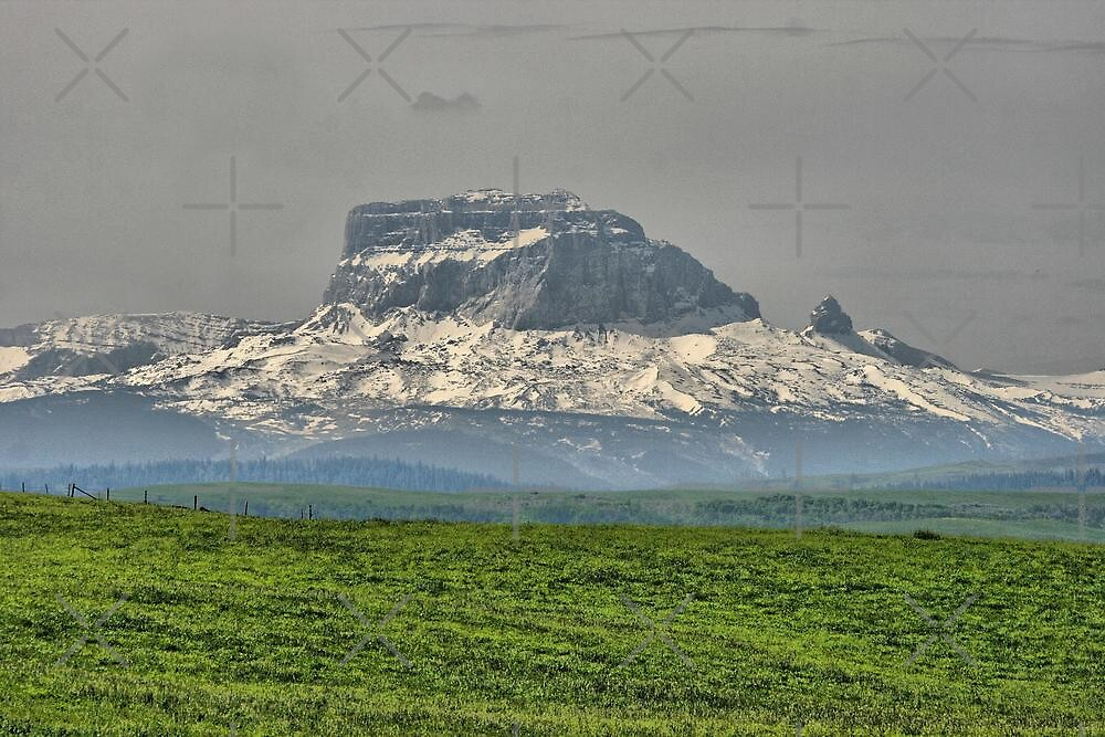 Chief Mountain by Vickie Emms