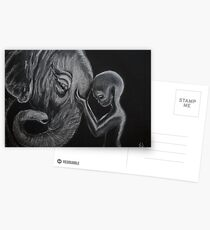 Consulting with the Elephant Nation Postcards