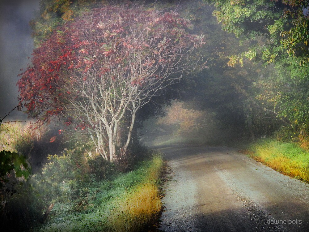the road to everafter by dawne polis