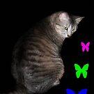 Cat and Butterflies ©  by Dawn Becker