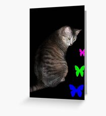Cat and Butterflies ©  Greeting Card