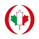 Italian Canadian Multinational Patriot Flag Series by Carbon-Fibre Media