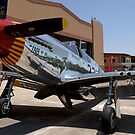 """INA The Macon Belle"": P-51C Mustang by Pirate77"