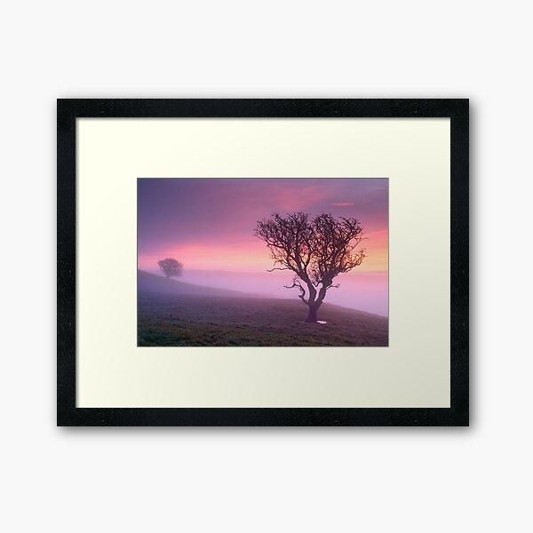 Misty sunrise, The Helm - Cumbria Framed Art Print