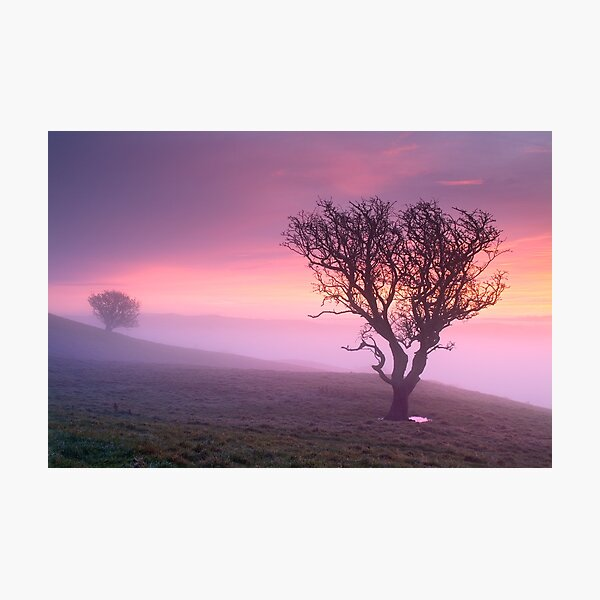 Misty sunrise, The Helm - Cumbria Photographic Print