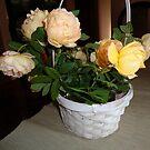 « Roses dans le panier » par Ana Belaj