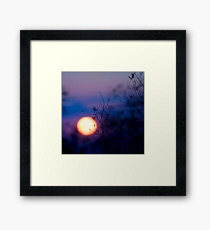 Sunset Over Kruger National Park Framed Print