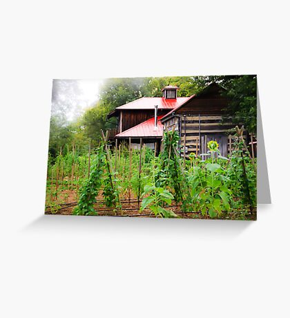 Backyard Garden Greeting Card