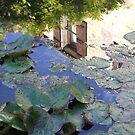 Mill Pond by Samantha Higgs