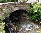 Stone Bridge by Carol Bleasdale