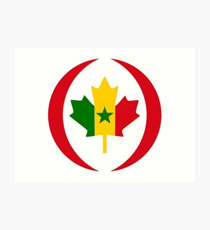 Senegalese Canadiain Multinational Patriot Flag Series Art Print