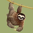 Pygmy Three-Toed Sloth by Tami Wicinas