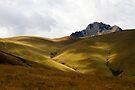 Cerro Negro by Walter Quirtmair