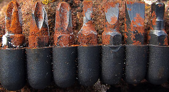 Rusty screwdriver bits by David Carton