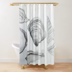 Sea Shells 4 by Margo Humphries Shower Curtain