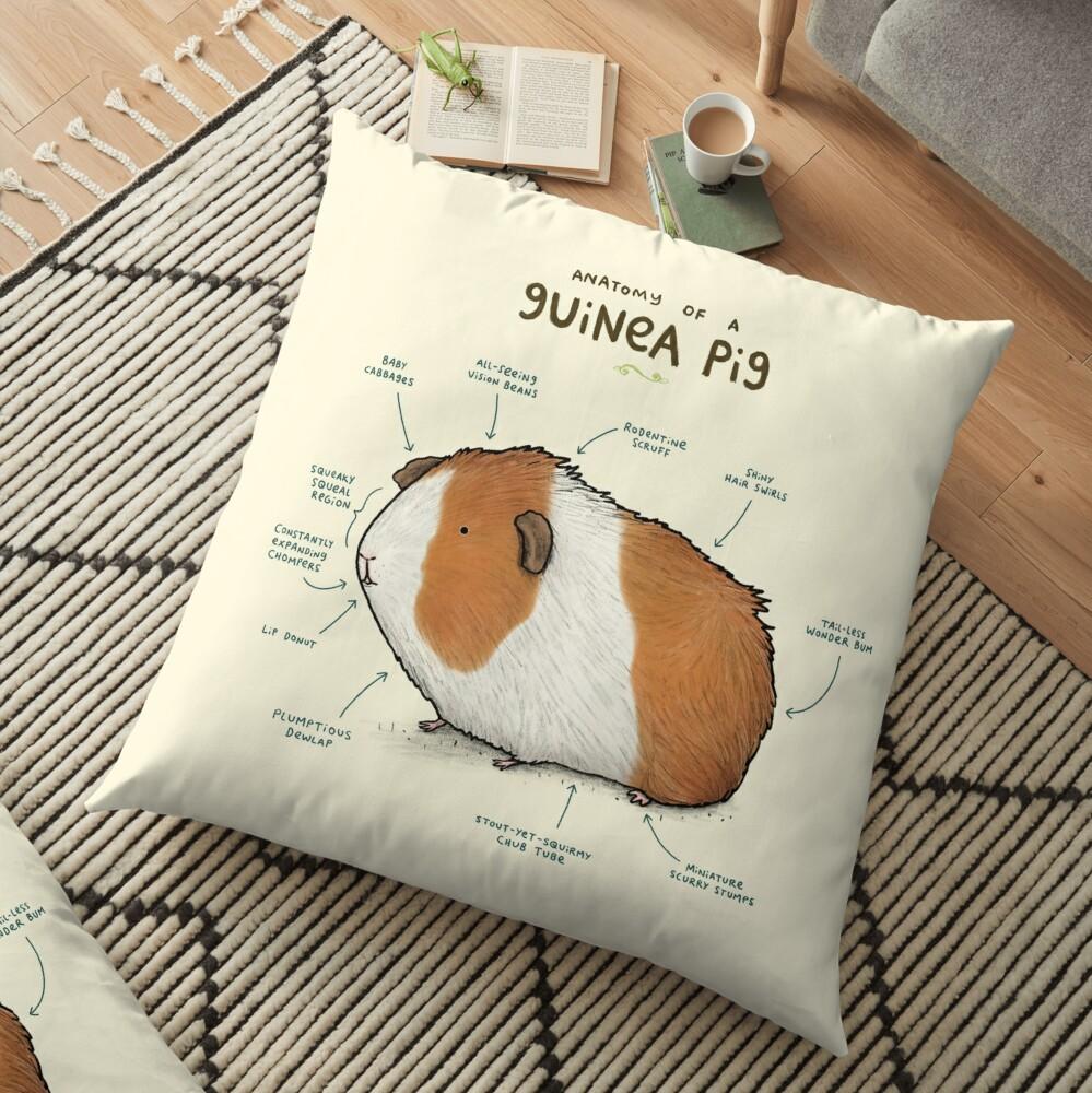 Anatomy of a Guinea Pig Floor Pillow