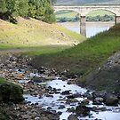 Leighton Reservoir, under the arches by monkeyferret