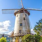 Die Windmühle, Launceston, Tasmanien, Australien von Elaine Teague