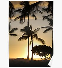 sunset and palm trees Poster