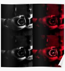 Warholian Canon Portrait  Poster